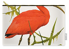 A Scarlet Ibis From South America Carry-all Pouch