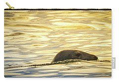 A Seal's Late Afternoon Swim Carry-all Pouch