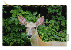 A Serious Deer Carry-all Pouch