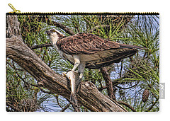 Carry-all Pouch featuring the photograph A Speckled Trout Breakfast by HH Photography of Florida