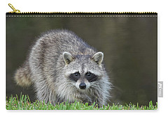 A Surprised Raccoon Carry-all Pouch