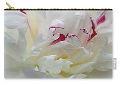 Carry-all Pouch featuring the photograph A Touch Of Color by Sandy Keeton