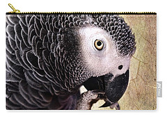 Carry-all Pouch featuring the photograph A Touch Of Grey by Betty LaRue