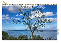 A Walk Along Lake Michigan Carry-all Pouch