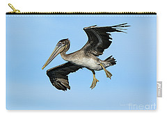 Carry-all Pouch featuring the photograph A Young Brown Pelican Flying by Susan Wiedmann