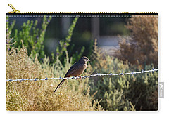 Abert's Towhee Carry-all Pouch