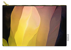 Abstract 082312 Carry-all Pouch