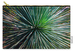 Abstract Nature Desert Cactus Photo 207 Blue Green Carry-all Pouch