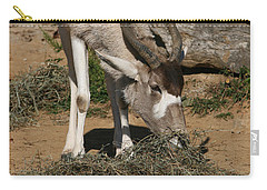 Addax Carry-all Pouch