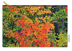 Adirondack Crimson Carry-all Pouch by Diane E Berry