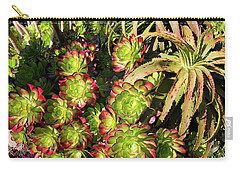 Aeonium Cyclops And Aloe Vaombe  Carry-all Pouch