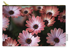 African Daisy Zion Red Carry-all Pouch