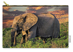 African Elephants At Sunset Carry-all Pouch by Lynn Bolt
