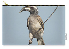 African Grey Hornbill Tockus Nasutus Carry-all Pouch by Panoramic Images