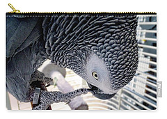 African Grey Parrot Carry-all Pouch by Melissa Messick