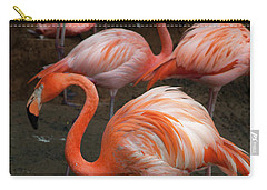 African Lesser Flamingos, Ft. Worth Zoo Carry-all Pouch