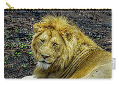 African Lion Close-up Carry-all Pouch
