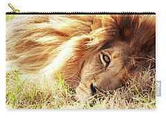 African Lion Closeup Lying In Grass Carry-all Pouch