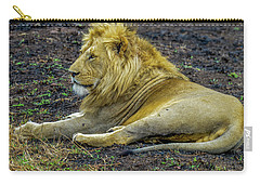 African Lion Resting Carry-all Pouch