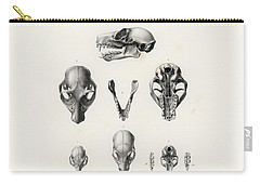 African Mammal Skulls Carry-all Pouch