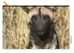African Wild Dog Okavango Delta Botswana Carry-all Pouch