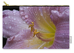 After The Rain Carry-all Pouch