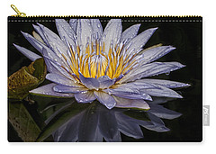 After The Rain Carry-all Pouch by Roman Kurywczak
