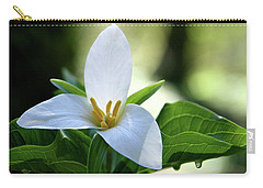 After The Rain Carry-all Pouch by Sheila Ping