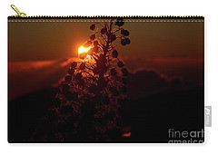Carry-all Pouch featuring the photograph Ahinahina - Silversword - Argyroxiphium Sandwicense - Sunrise by Sharon Mau