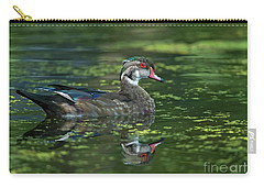 Carry-all Pouch featuring the photograph Aix Sponsa.. by Nina Stavlund