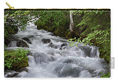 Alaska Waterfall Picture  Carry-all Pouch
