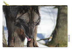 Alaskan Tundra Wolf Carry-all Pouch