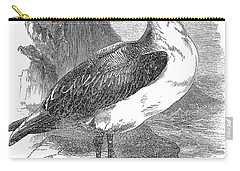 Albatross Carry-all Pouch by Granger