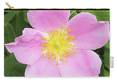 Alberta Rose Carry-all Pouch