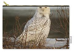 Alert Snowy Owl Carry-all Pouch