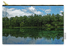 Alexander Springs Pool Carry-all Pouch by Paul Mashburn