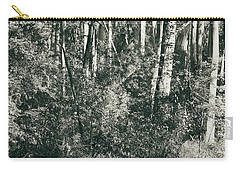 Carry-all Pouch featuring the photograph All Was Tranquil by Linda Lees