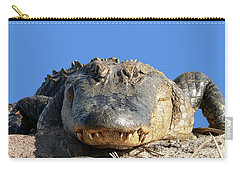 Carry-all Pouch featuring the photograph Alligator Approach .png by Al Powell Photography USA