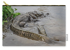 Alligators Courting Carry-all Pouch
