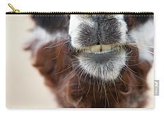 Alpaca #1 Carry-all Pouch
