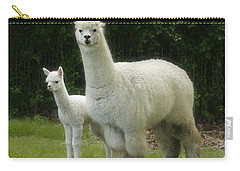 Alpaca And Foal Carry-all Pouch