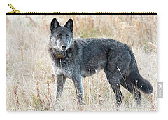 Alpha Female Carry-all Pouch