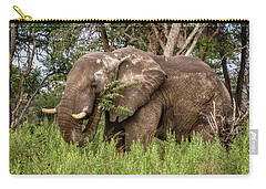 Alpha Male Elephant Carry-all Pouch