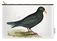 Alpine Chough Carry-all Pouch by English School