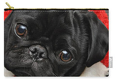 Alvin Carry-all Pouch