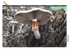 Amanita Carry-all Pouch by Chris Flees