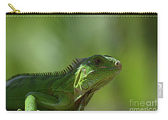 Amazing Look At A Common Iguana Carry-all Pouch by DejaVu Designs