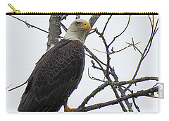 American Bald Eagle Pictures Carry-all Pouch