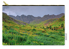 American Basin Summer Storm Carry-all Pouch by Teri Brown