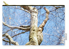 Carry-all Pouch featuring the photograph American Beech Tree by Christina Rollo